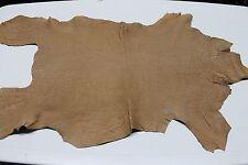 Italian thick Goatskin leather skin VEGETABLE TAN GRAINY SAND CAMEL 5sqf #A2034