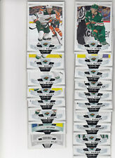 19/20 OPC Minnesota Wild Team Set with RC and Insert - Dubnyk Sturm RC +