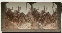 Grande Guerre PRIMA MONDIALE Francia Belgio Regno Unito Germania Stereo Foto
