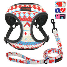 Soft Mesh Dog Cat Harness and Lead Safety Reflective Vest for Small Medium Dogs