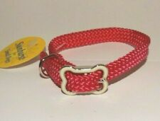 "New Dog Collar Coastal Pet Sunburst Small Dogs Bone Buckle 3/8"" x 12"" Hot Pink"