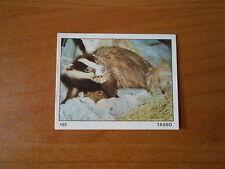 figurina IL MONDO DEGLI ANIMALI n.103 - ED. PANINI 1971