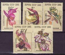 Russia - MNH - Bloemen / Flowers / Blüte