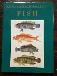 Fish Classic Natural History Prints