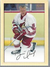 Brett Hull 2005-06 Upper Deck NHL Hockey Beehive Card #208 Large Card