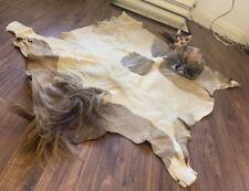 Icelandic Pony Skin/hide Rug