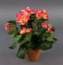 Begonie 32cm pink-hellgelb im Topf LM Kunstpflanzen künstliche Blume Kunstblume