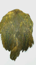 "GUINEA FOWL SKIN with WINGS & TAILS  "" Sunburst Yellow ""    very good quality"