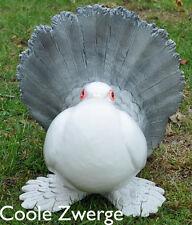 Gartenzwerge Tierfigur --   Pfautaube   --   22cm hoch  NEU  Coole Zwerge  #0345