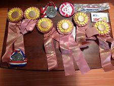 Vintage 80's Running Medals and Ribbons Marathon, Fun Run, 10k, Lions Club, Race