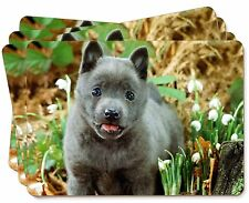 More details for blue schipperke dog picture placemats in gift box, ad-bs1p