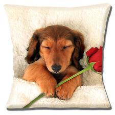 perro salchicha Funda de cojín 40.6cm 40cm Dormilones marrón pelo largo ROSA