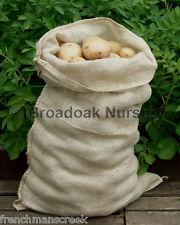Jute Hessian Potato Vegetable Storage Sack 50 X 78cm Hessian Sacks Veg Bags