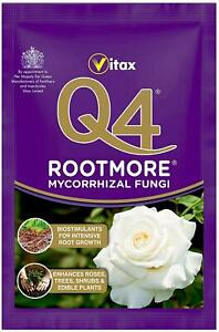 Vitax Q4 Rootmore Mycorrhizal Fungi Root Growth Roses Trees Shrubs 60G