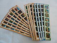 15 Kenner give a show childrens slides job lot Noddy, Chip N Dale Popeye Lassie