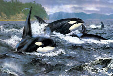 "oil painting print on canvas Orca-Stration, Art QUALITY 24""x36""Home decor Art"