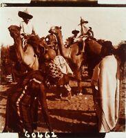 SAHARA Méharistes Dromadaires Méhari, Photo Stereo Plaque Verre ca 1910