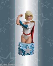 Power Girl Bust Women of the DC Universe Series 3 Amanda Conner 741/5000 SEALED