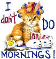 I Don't Do Mornings Cat Quilting Fabric Block 8x8