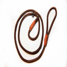 Brown Adjustable Nylon Rope Slip Lead Train Leash w/ Collar Small Pet Dog Cat