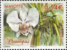 Timbre Flore Mayotte 195 ** année 2007 lot 22477