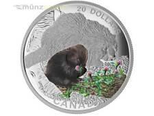 20 $ Dollar Baby Animals Porcupine Stachelschwein Kanada 2015 1 oz Silber PP