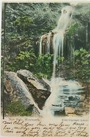 .NEW FALLS , WENTWORTH NEW SOUTH WALES EARLY 1900'S POSTCARD