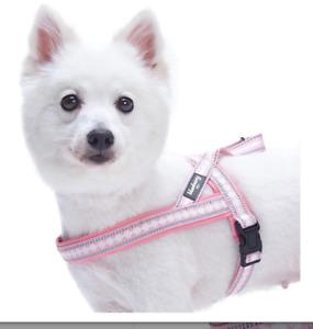 Blueberry Pet 7 Colors Soft & Safe 3M Reflective Jacquard Neoprene Padded Dog Co