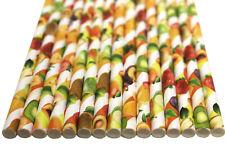 Fruity Paper Straws (Ø 6mm, 200mm) - Pack Qty 1-500 - UK MADE
