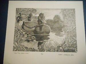 """Half Time, Backs Ahead"" Albert Westbrooke Jones SIGNED A/P ducks art print"