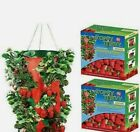 Topsy Turvy Upside Down Strawberry Planter. Pack of 2, BRAND NEW, Ships Free!