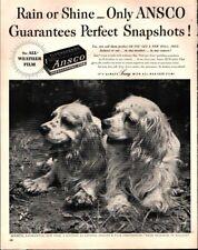 1951 Ansco Photo Camera Film cute Dogs Vintage Print Ad 650