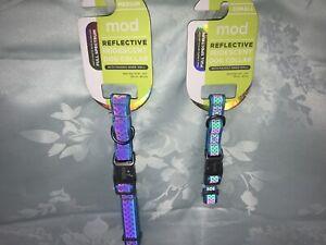 Mod Reflective Iridescent Dog Collar Aqua by Mod w. Padded Inner Wall
