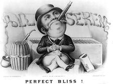 ADVERT BLACK WHITE CIGAR TOP HAT PERFECT BLISS ALL SEREM ART POSTER PRINT LV023
