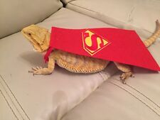 Bearded Dragon superman cape photo prop Costume Hammock Reptile Rat Accessories