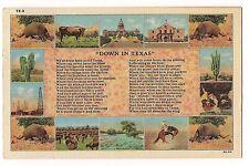 DOWN IN TEXAS POEM Multi View Armadillo  TX  LINEN Postcard FREE SHIP 1955