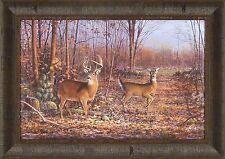 """LOVER'S LANE"" by Scott Zoellick 19x26  FRAMED PRINT S/N Whitetail Deer Buck Doe"