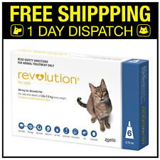 Revolution For Cats Flea Topical 2.6-7.5kg Blue 6 Pack