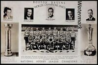 1940 - 41 NHL Stanley Cup Champions Boston Bruins Team Picture 8 X 12 Photo Pic