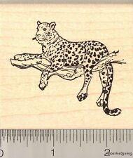 Leopard in Tree rubber stamp J11612 WM Wildlife Cat
