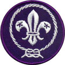Cub Scout WORLD CREST Emblem Badge Patch Boy Scout BSA