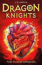 The Flame Dragon by J. R. Castle (Paperback, 2015)