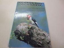 Common Birds of Atlanta Identification and Photographs of 61 Bird Species