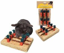 ROSEWOOD BOREDOM BREAKER CARROT PLAY PATCH RABBIT GUINEA PIG HUTCH CAGE CHEW TOY