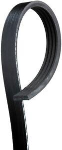 Serpentine Belt  ACDelco Professional  4K336