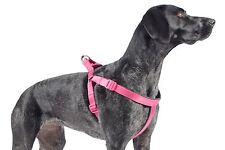 Ancol Padded Harness - Raspberry - Large