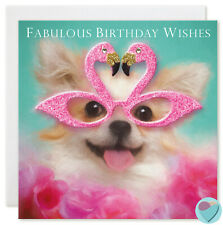 Girls Women birthday card FABULOUS BIRTHDAY WISHES to from Chihuahua dog lover