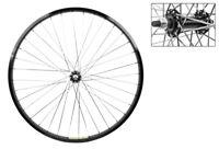 WM Wheel  Front 26x1.75 559x25 Stl Bk 36 Stl Bo 3//8 Bk 14g Bk