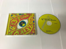 The Psychedelic Sounds Of…13th Floor Elevators  AAD CD RMSTER 803415103829 MINT