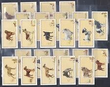 More details for gallaher, dogs (captions in block) original set of 24 issued in 1934. exc+++